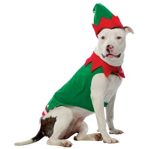 Rasta Imposta Elf Dog Costume, X-Large - Rasta Imposta Elf Dog Costume, X-Large XMAS Pinterest