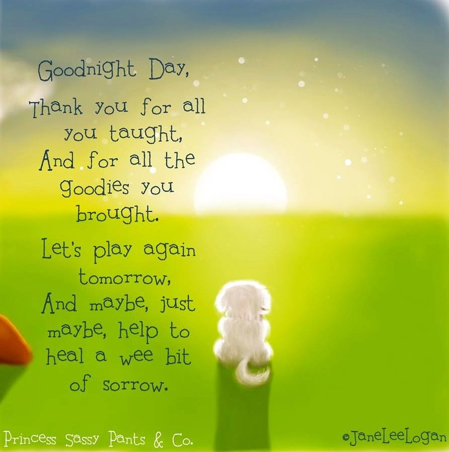 Goodnight Day Quote Via Www Facebook Com Princesssassypantsco Good Night Moon Day And Night Quotes Good Night Quotes