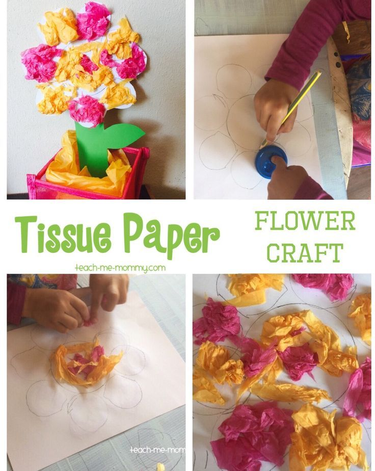 Bright Tissue Paper Flower Craft Easy Preschool Crafts Flower
