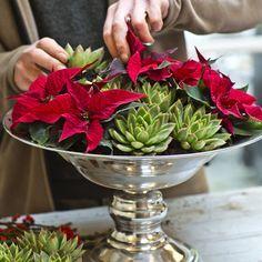 Hazlo tú misma: Tres centros para decorar tu mesa estas navidades