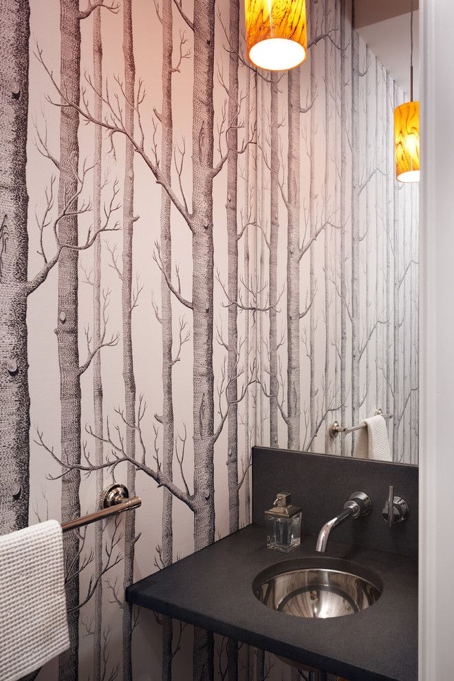 Delicieux Breathtaking Birch Tree Wallpaper Lowes Decorating Ideas Images In Powder  Room Contemporary Design Ideas
