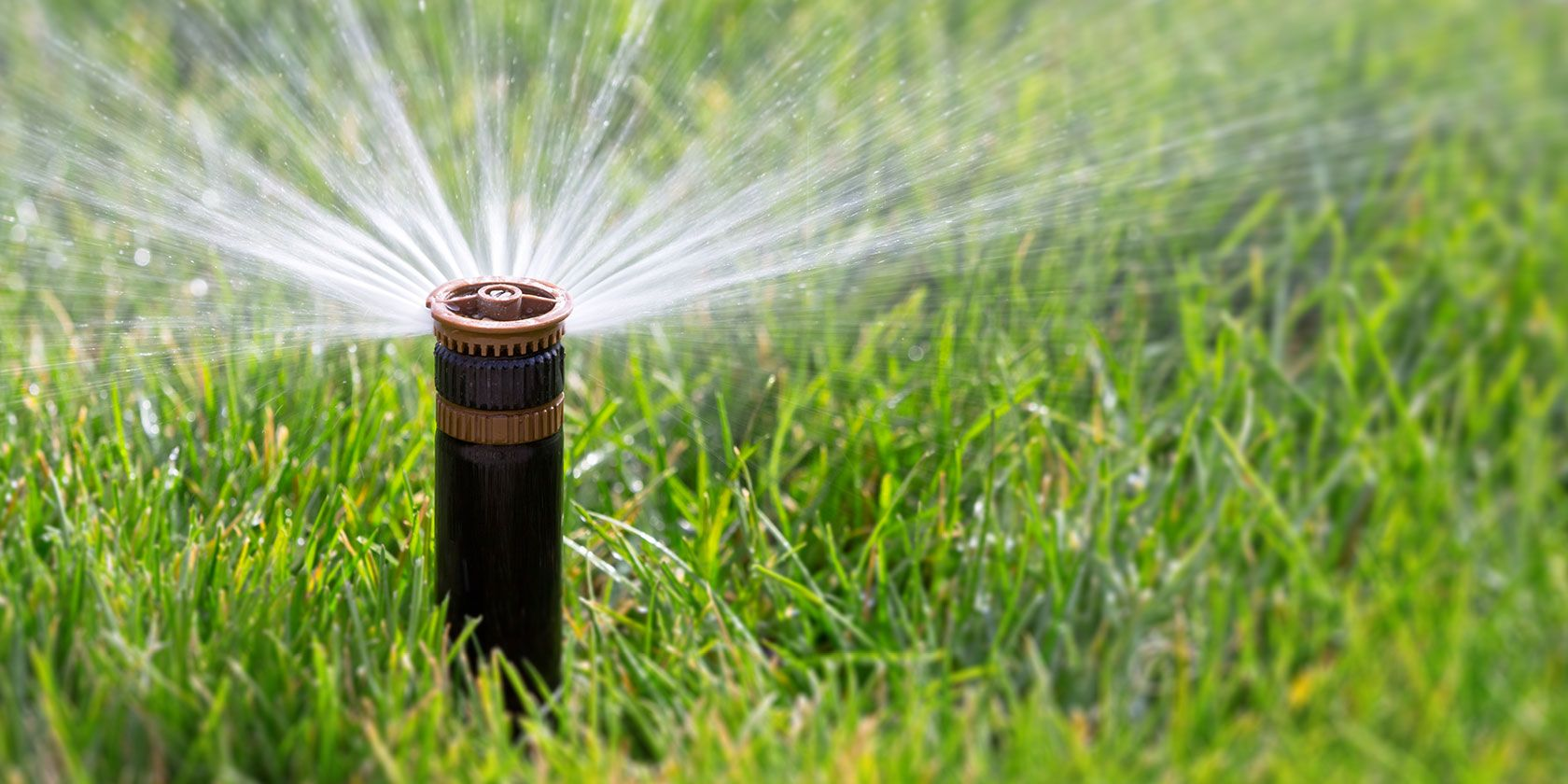 The 5 Best Smart Sprinkler Systems to Conserve Water and