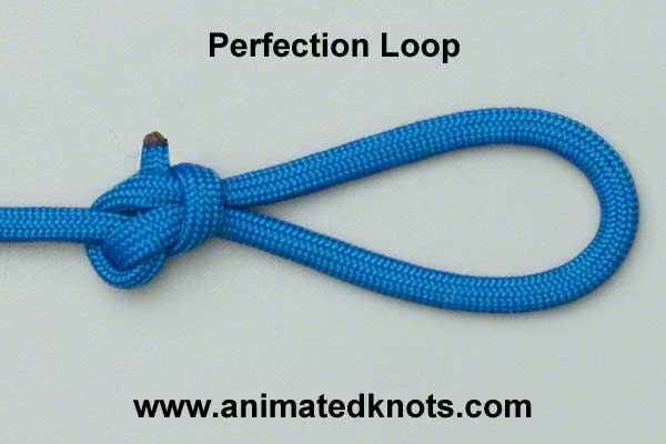 Perfection Angler S Loop Knot Loop Knot Knots Fishing Knots