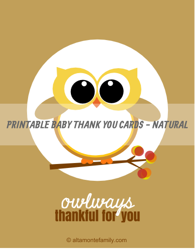 Free printable baby owl thank you cards free printable owl and free printable baby owl thank you cards m4hsunfo