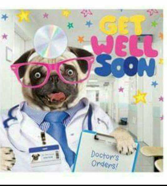 Get Well Soon Pug Picture Http Www Giftideascorner Com Gifts