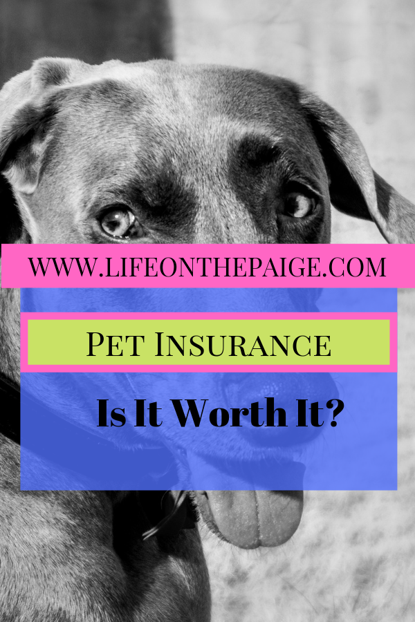 Pet Insurance Is It Worth It Pet Insurance Cushing Disease