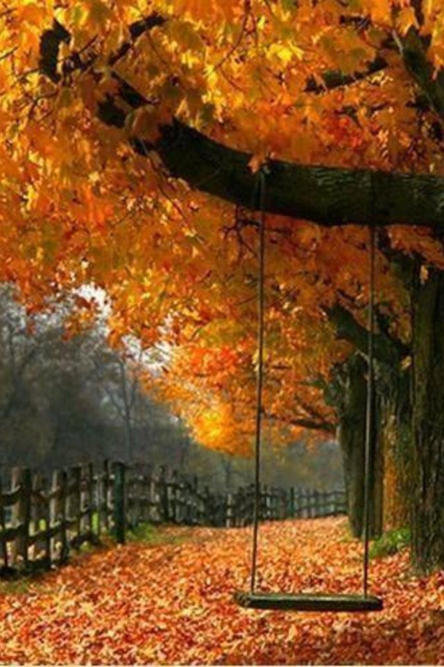Gracious outdoor living for fall autumn scenery and beautiful gracious outdoor living for fall voltagebd Images