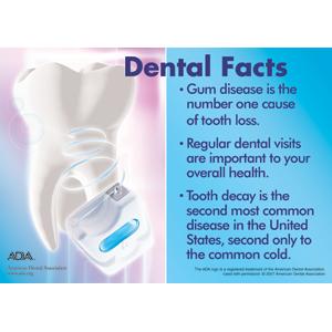 17 Best images about Dental Facts on Pinterest | Smile, Dental ...