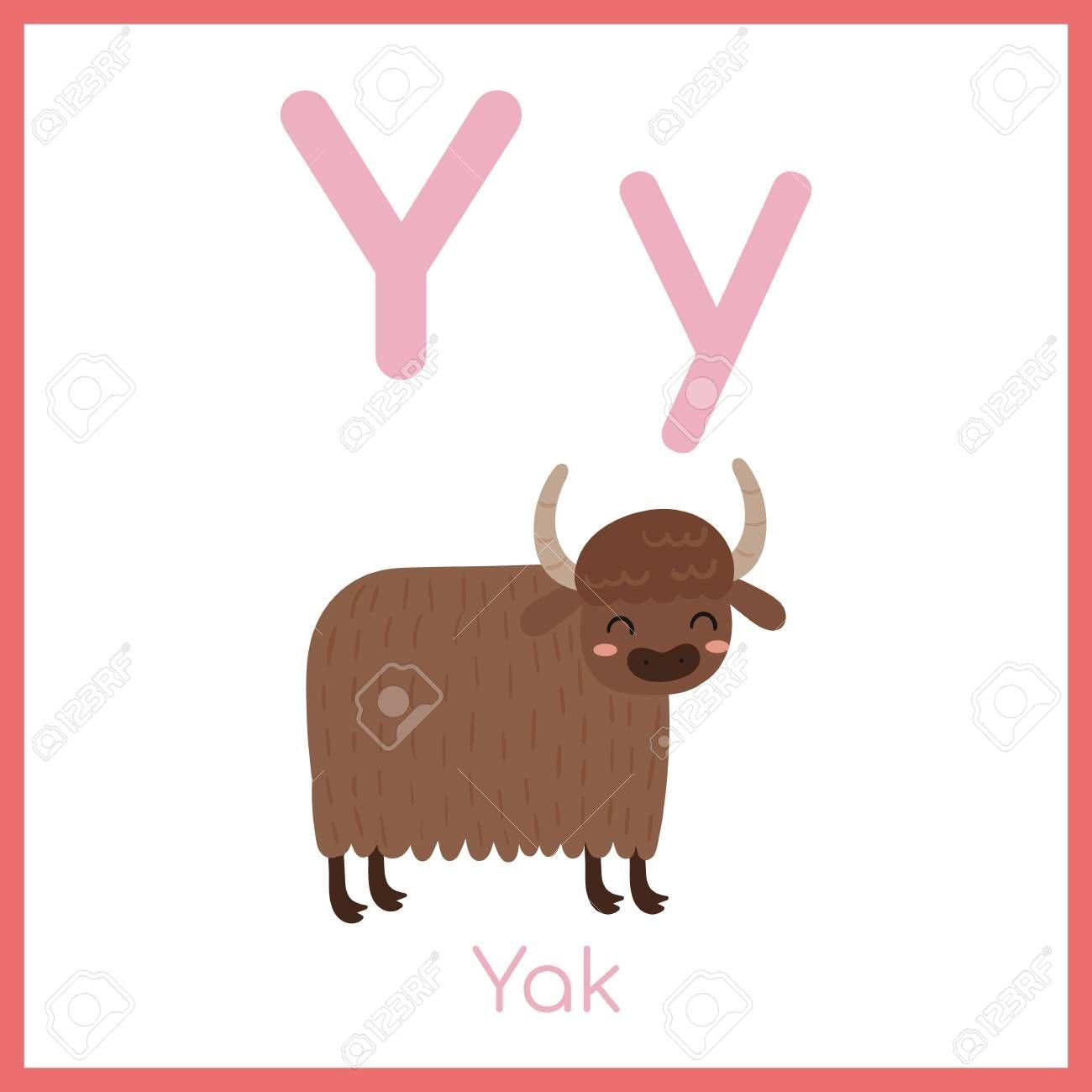 Cute Animal Alphabet Y Letter Cute Yak Illustration