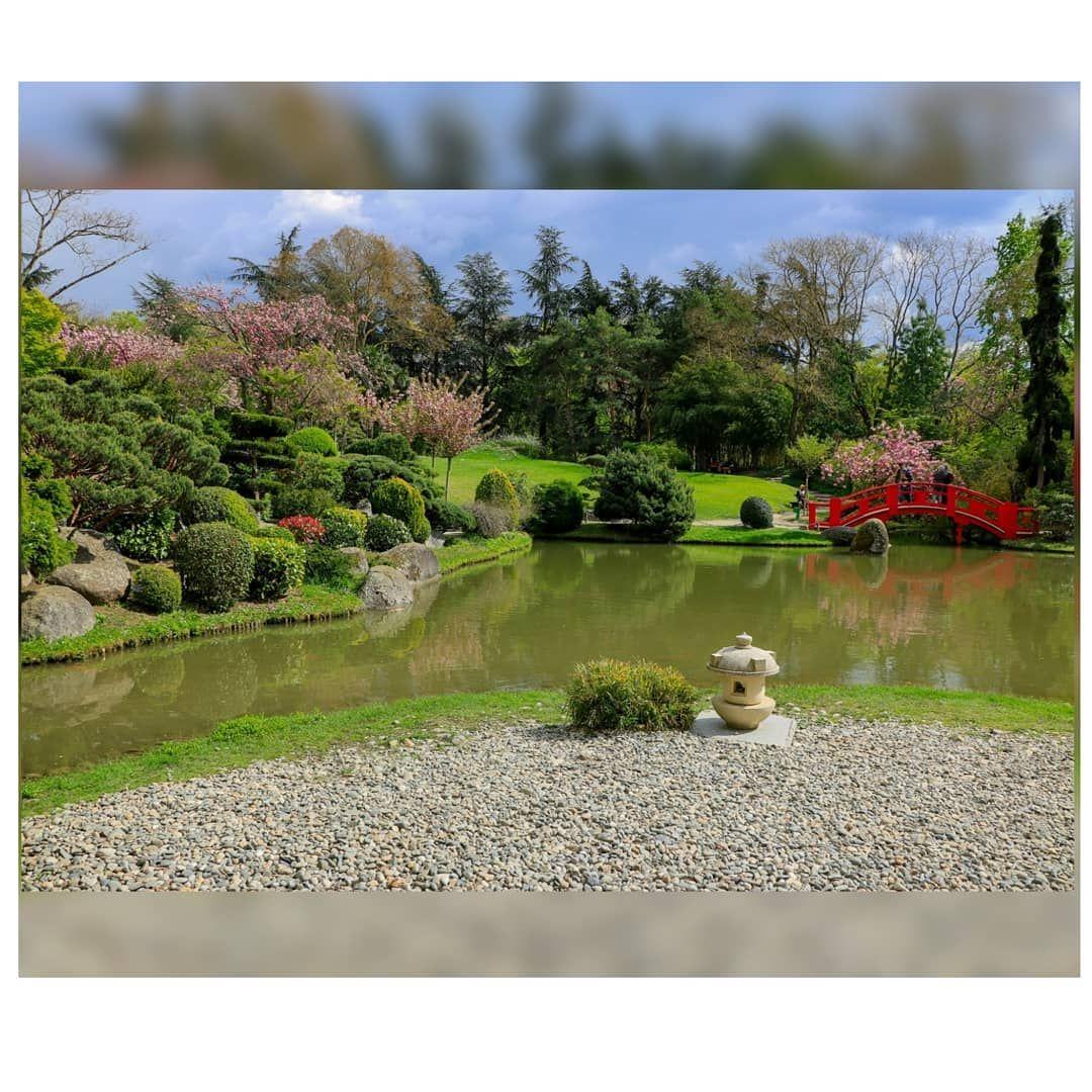 Jardin Japonais De Toulouse Landscape Friendship Japanese