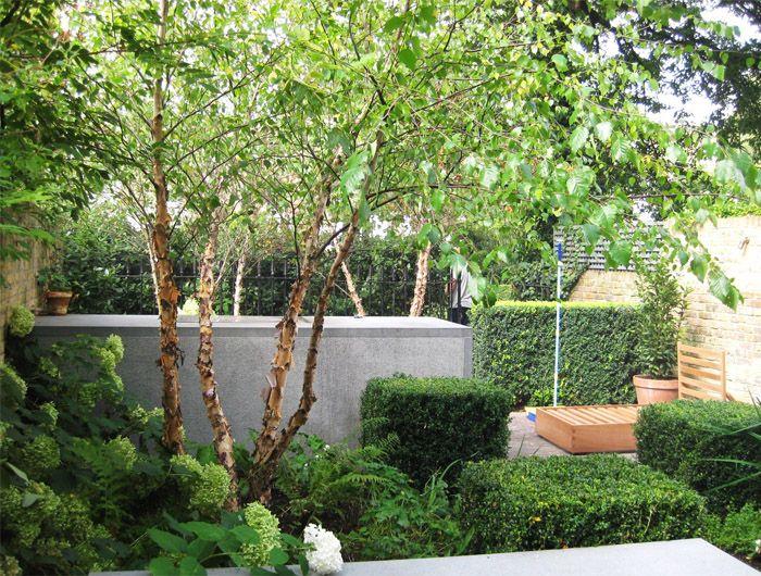 Notting Hill Garden Jinny Blom Modern Garden Contemporary Garden Design Garden On A Hill