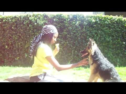 Chiling with the german shephard and dog wash day - YouTube
