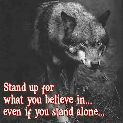 I will do that     From today forward i will not allow ppl to take advantage of my kindness is part of Wolf quotes -