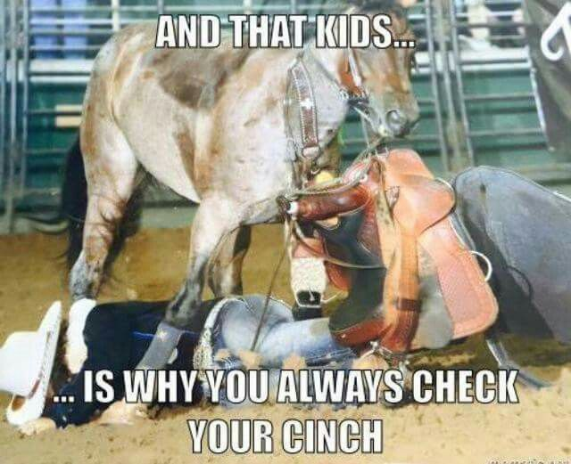 And That Kids Is Why You Always Check Your Cinch Funny Horse Memes Horse Quotes Funny Horse Riding Quotes