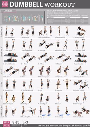 #19x27 #Dumbbell #Exercise #Laminated #Poster #Workout Want tight and toned abs, sculpted arms and shoulders, and hot-in-heels-legs? Discover the best dumbbell exercises recommended by the World's Top Certified Personal Trainers for toning and tightening #dumbbellexercises