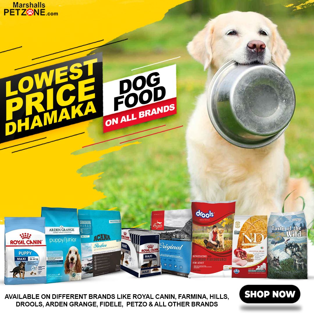Available On Different Brands Like Royal Canin Farmina Hills