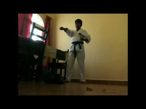 how to learn karate at home - YouTube
