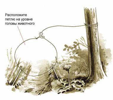 Как сделать петлю на силок