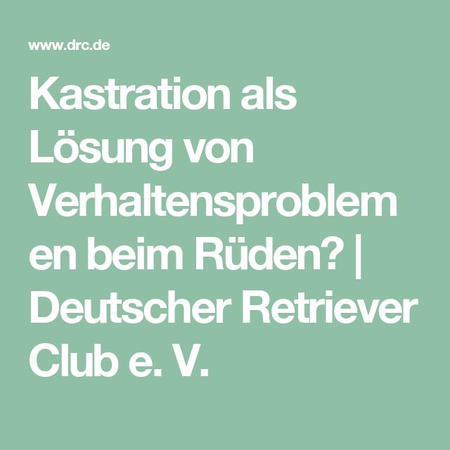 Kastration Als Losung Von Verhaltensproblemen Beim Ruden Deutscher Retriever Club E V Deutsch Losung Gesundheit