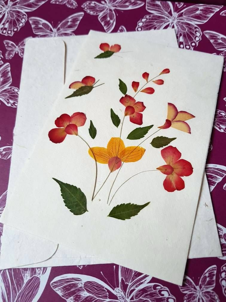 Greeting Cards With Dry Leaves And Flowers Real Pressed Flower Blank Card How To Make Greetings Pressed Flowers Blank Cards