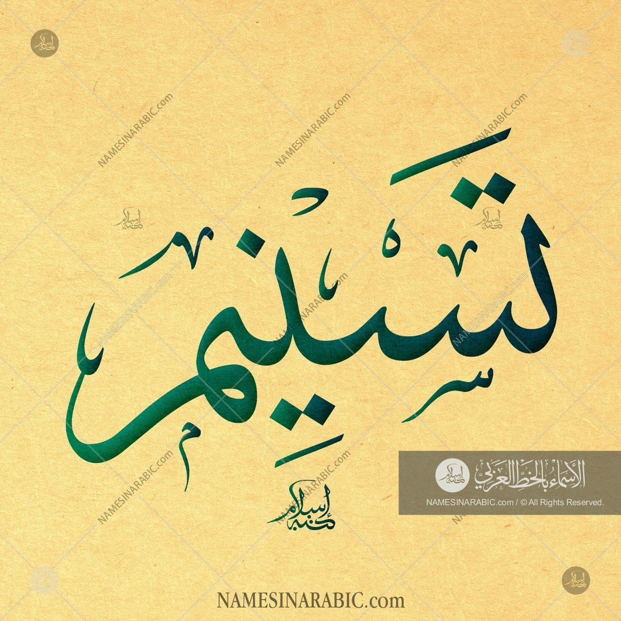 Tasnim Name In Arabic Thuluth Calligraphy Calligraphy For Beginners Calligraphy Name Arabic Calligraphy Art