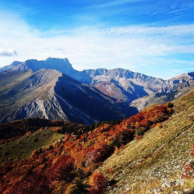 Magnifiques couleurs d'automne ! (Merci à Bruno).