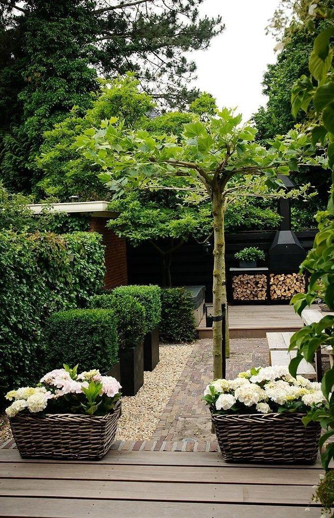 Modern Green And Black Garden Tuin Geheime Tuin Tuin Ideeen