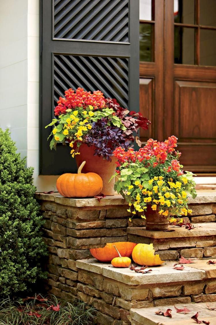 90+ Fantastic Fall Container Gardening Inspirations
