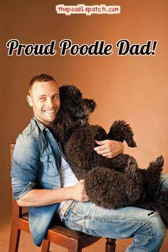 PROUD POODLE DAD!!!