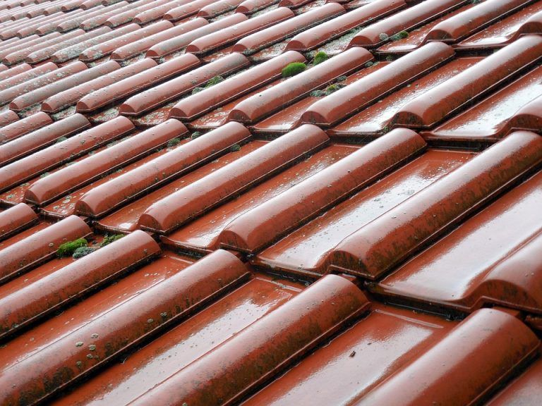 Roof Cleaning Pressure Washer E And L Roofing In 2020 Roof Repair Roofing Roof Cleaning