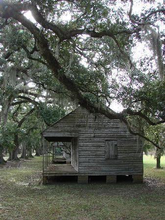 8f1c4191930a5bd416a3c350cf874989 Magnolia Plantation Slave Houses on magnolia plantation winter, magnolia plantation pool, magnolia plantation sc,