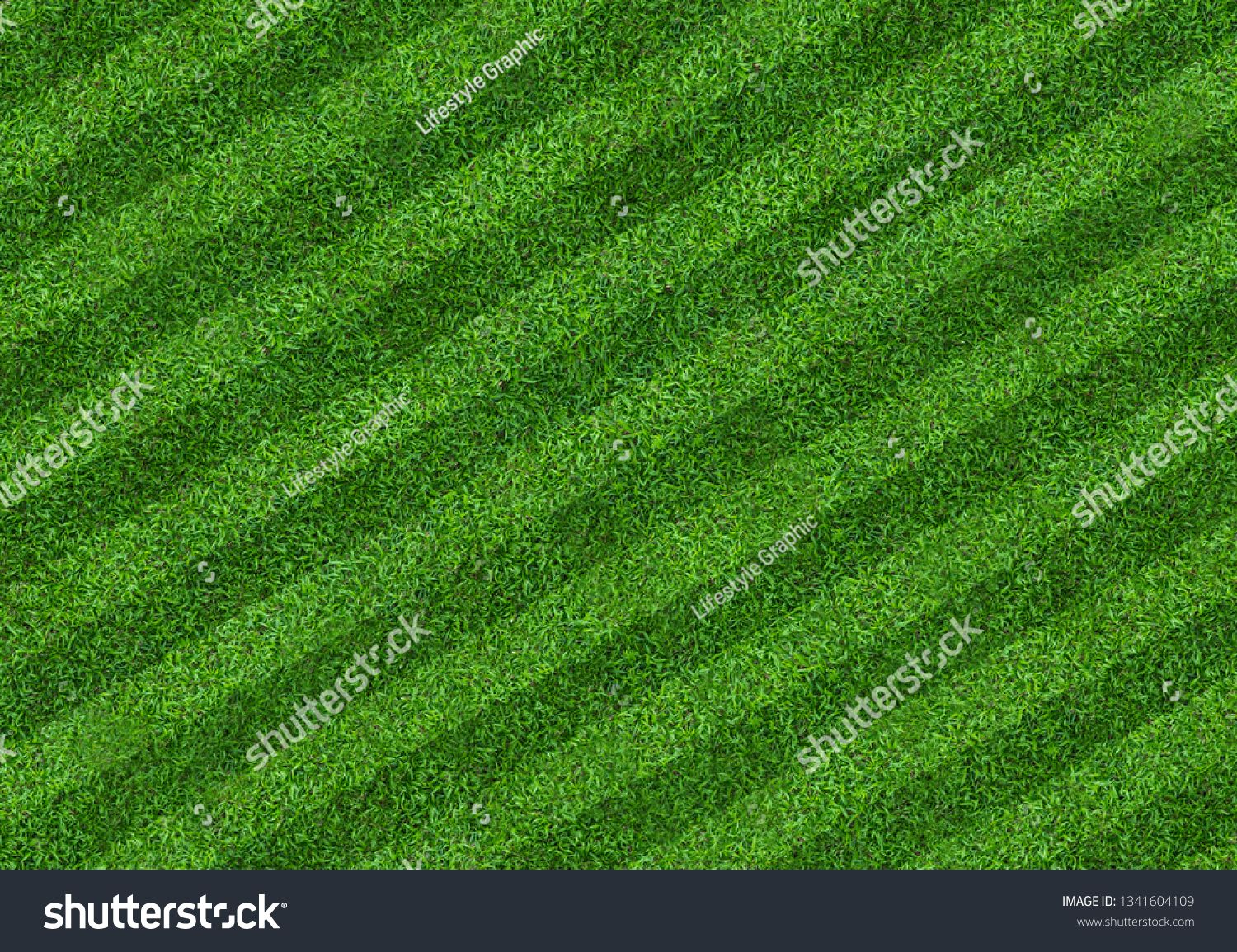Green Grass Field Background For Soccer And Football Sports Green Lawn Pattern And Texture Background Close Up Image Ad Grass Field Green Grass Green Lawn