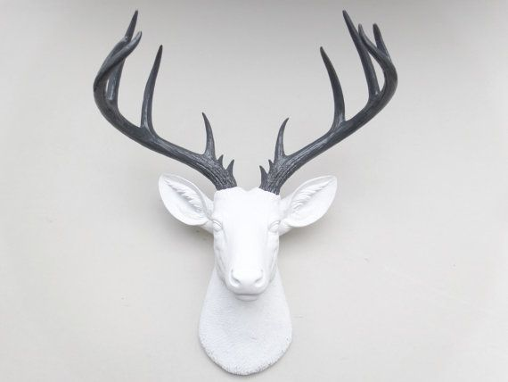 Attractive Large Deer Head   White And Gray Deer Head Wall Mount   14 Point Stag Head