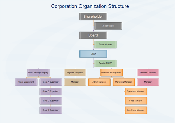 Corporation Organization Structure Examples Organization Chart Organizational Chart Company Structure
