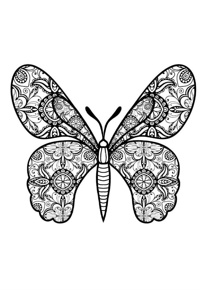 Раскраски-антистресс с изображением бабочек | Anti-stress ...
