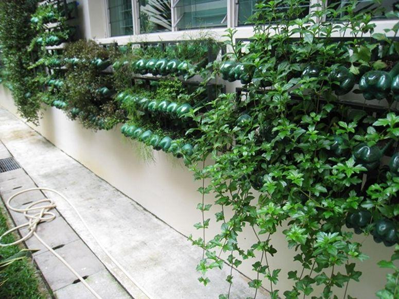 Jardim suspenso: alternativa ideal para pequenos ambientes