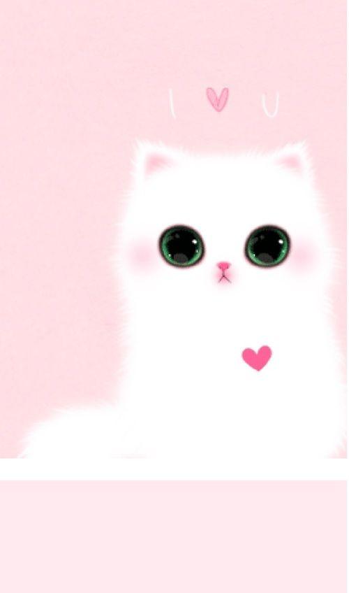 White Kitten Wall À¹à¸¡à¸§à¸™ À¸à¸¢ À¸§à¸à¸¥à¹€à¸›à¹€à¸›à¸à¸£ À¸ž À¸™à¸«à¸¥ À¸‡