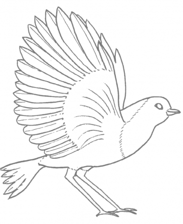 Robins Coloring Pages Coloring Rocks Bird Coloring Pages Coloring Pages Robin Bird