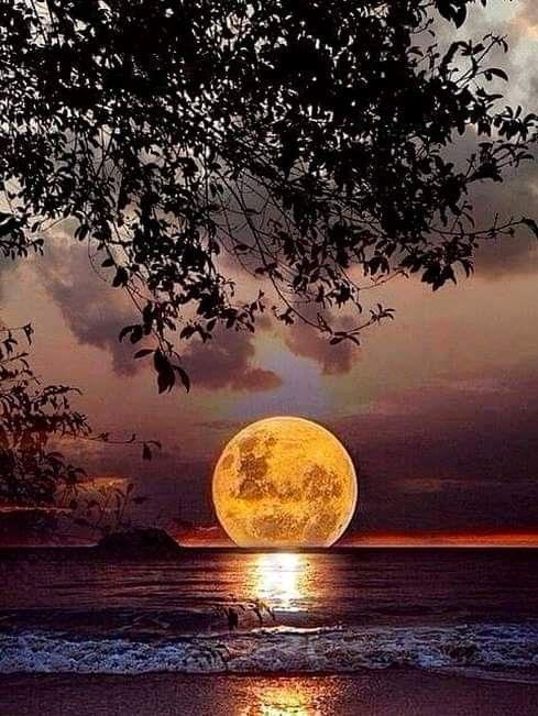 Luna Llena causante de la puesta de Sol hermosa #photoscenery