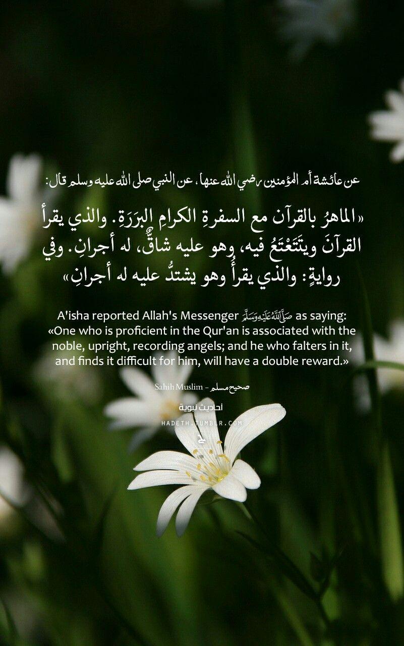 الماهر بالقرآن مع السفرة الكرام البررة Islamic Quotes Quran Hadith Islam Facts