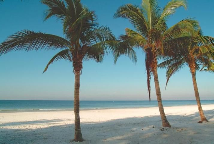 Public Beaches Fort Myers | Fort Myers Beach Public Access