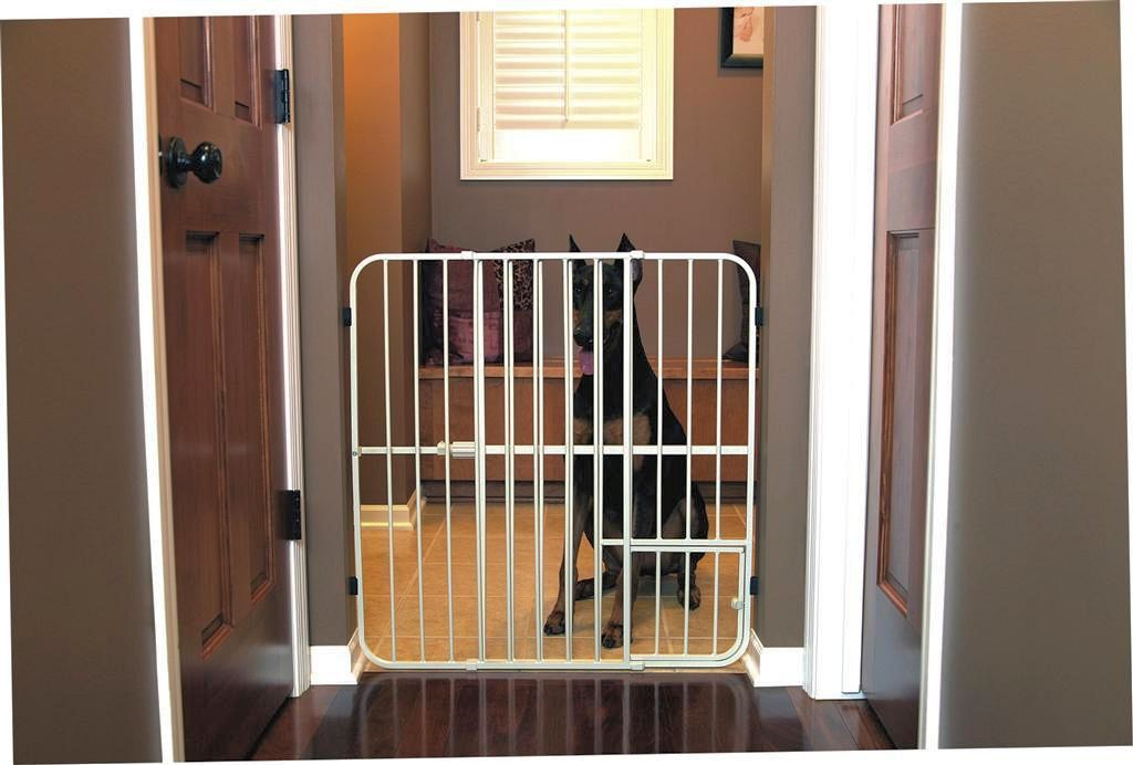 Carlson Big Tuffy Expandable Gate With Small Pet Door Pet Flaps