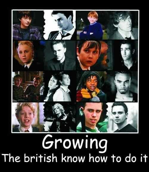 Harry Potter Harry Potter Obsession Harry Potter Love Harry Potter Series