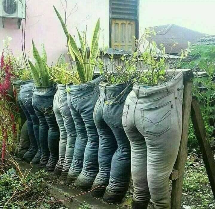 Recycled Blue Jean Planters | Outside | Garden, Plants und ...