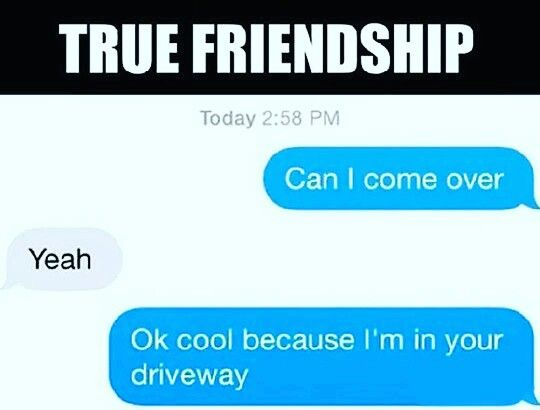 Pin By Alex Shaut On Funny Friends Funny National Best Friend Day Best Friends Funny