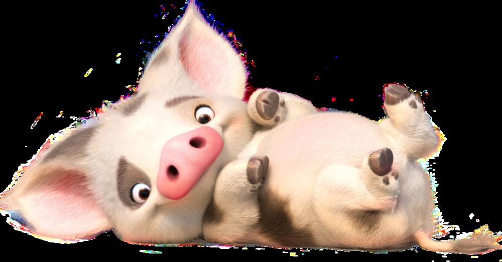 37++ Moanas pig info