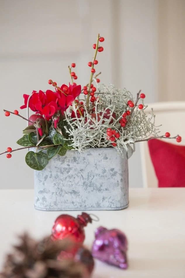 Jak Pielegnowac Doniczkowe Cyklameny Fiolki Alpejskie Zielony Ogrodek Artistic Christmas Cards Christmas Home Christmas