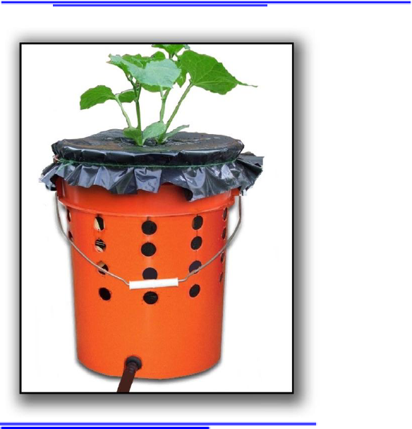 Alaska Grow Buckets. PDF With Instructions On How To Build