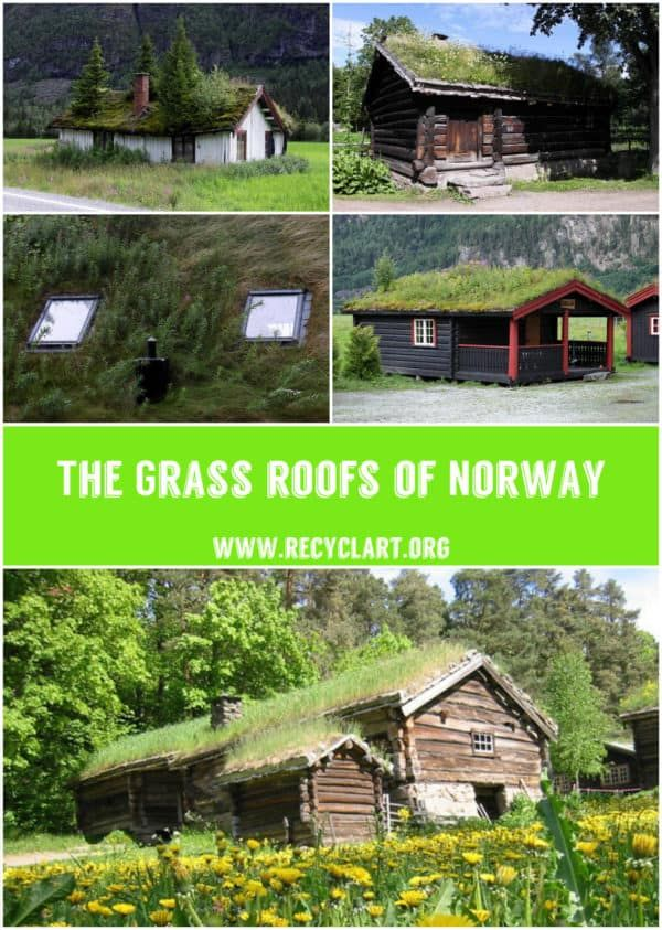 Real Grass Roofs Of Norway Roof Plants House Roof