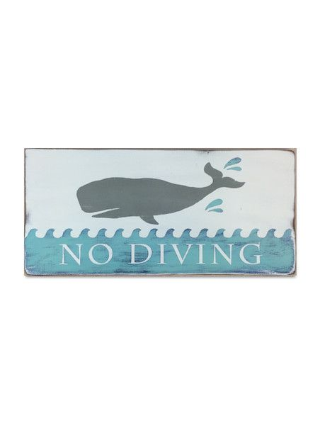 no diving   Primitive bathrooms, Painted signs, Beach signs